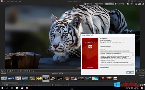Képernyőkép ACDSee Pro Windows 8