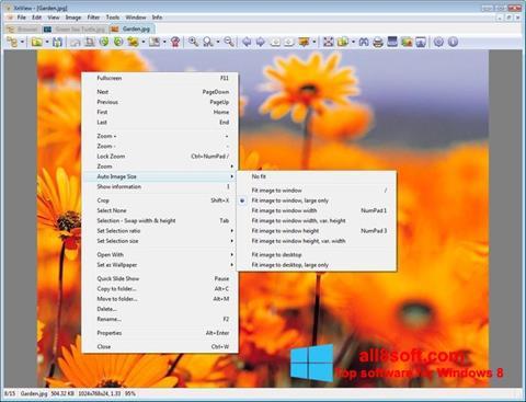 Képernyőkép XnView Windows 8