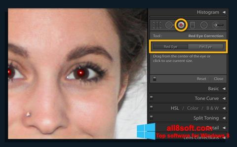 Képernyőkép Red Eye Remover Windows 8