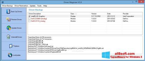Képernyőkép Driver Magician Windows 8