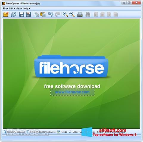 Képernyőkép Free Opener Windows 8