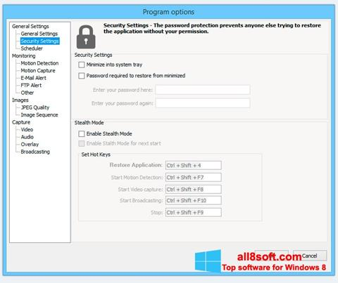 Képernyőkép Webcam Surveyor Windows 8