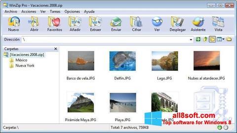 Képernyőkép WinZip Windows 8