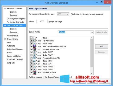 Képernyőkép Ace Utilities Windows 8
